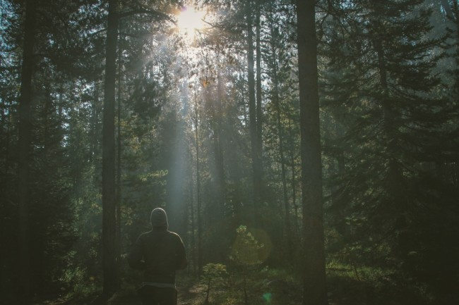 Person with light in forest