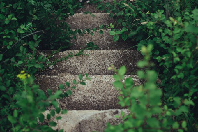 Stairway through green leaves--rodion-kutsaev--unsplash